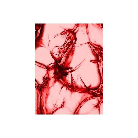 Red Line CV-2 vaselina rulment planetara cu Molibden rosu