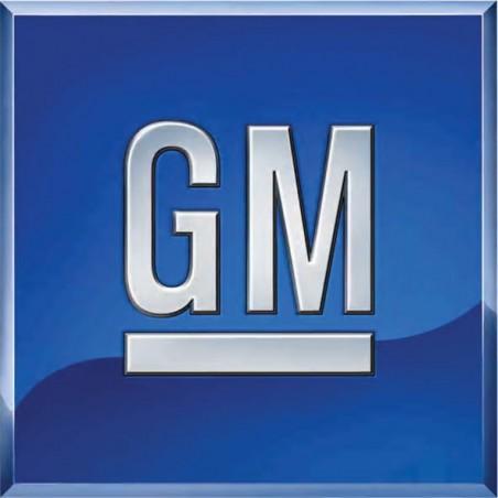 GM dexos2